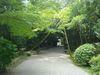 秋篠寺の境内