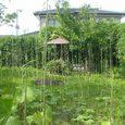 鶴岡市内の誰かが作った庭園