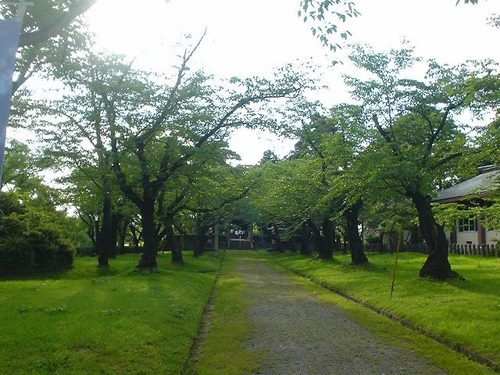 荘内神社の境内
