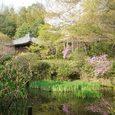 不退寺の庭園3