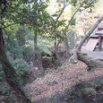 春日大社から若草山へ向かう途中の茶屋1