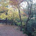 春日大社から若草山へ向かう途中の茶屋5