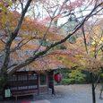 春日大社から若草山へ向かう途中の茶屋7
