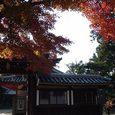 二月堂から東大寺に抜ける途中の家と紅葉