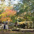 若草山ふもとの神社2
