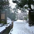 兼六園 桂坂の入り口