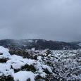 兼六園から見た金沢市内の風景